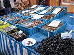 Austern aus Arcachon auf dem Wochenmarkt